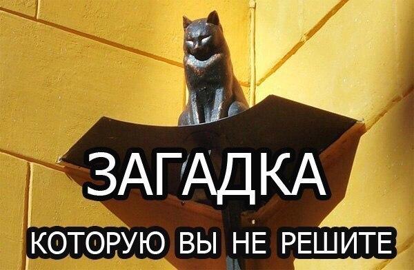 загадка про кошек в комнате чтобы сделать
