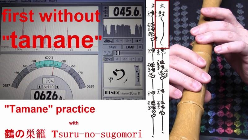 Tamane practice Tsuru no Sugomori
