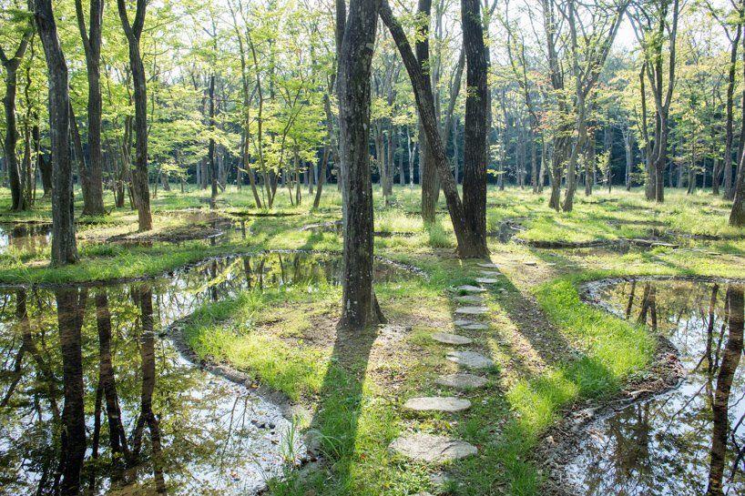 junya ishigami sculpts poetic landscape 'water garden' at japanese oasis art biotop