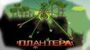 Гайд про плантеру(terraria)