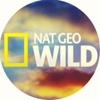 Nat Geo Wild Russia