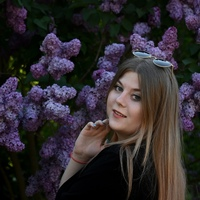 Фотография профиля Anastasia Vasilyeva ВКонтакте