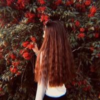 Виолетта Щёлокова, 516 подписчиков