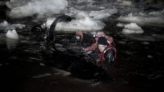 В ледовом плену (Captured In Ice)