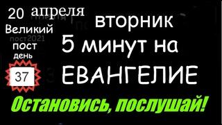 Евангелие дня 5 минут #мирправославия Великий пост 20 апреля вторник (день 37 - ой) Библия